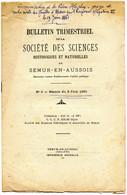 BROCHURE  SEMUR EN AUXOIS   1 SUR ALESIA    1 SUR JOACHIM DURANDEAU VITTEAUX  COTE D OR  CROTENAY - Bourgogne