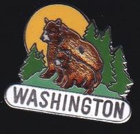 71524-Pin's.Ours Brun.Washington, La Capitale Des États-Unis, - Animali
