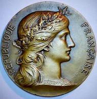 Concours Hippique. Médaille - Andere