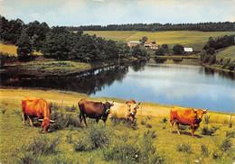 15-MONTSALVY-N°404-B/0247 - Autres Communes