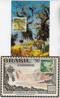 Brazil 1978 2 Maximum Card Stamp RHM-C-1052/1953Environmental Defense Iguaçu National Park Yellow Ipê Tree Waterfalls - Cartoline Maximum