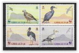 Gibraltar 1991 N° 629/632 Neufs Oiseaux - Gibraltar
