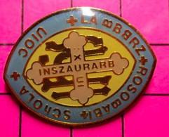 416C Pin's Pins / Beau Et Rare / THEME : AUTRES / INSZAURARB ROSOBABI SCHOLA Ecole Basque ? - Altri