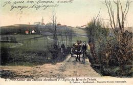 Belgique - Tournai - Mont-Saint-Aubert - Petit Sentier Aboutissant à L' Eglise Du Mont -de-Trinité - Tournai