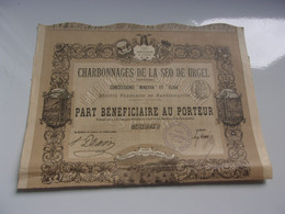 CHARBONNAGES DE LA SEO DE URGEL (espagne) 1893 - Non Classificati