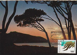Portugal & Maximum Card, Natural Resources, Forests, Coast Sunset, Lisbon 1977 (438) - Environment & Climate Protection