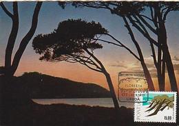 Portugal & Maximum Card, Natural Resources, Forests, Coast Sunset, Lisbon 1977 (438) - Bäume