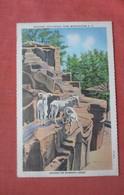 Aoudad Or Barbary Sheep   Ref  4994 - Sin Clasificación