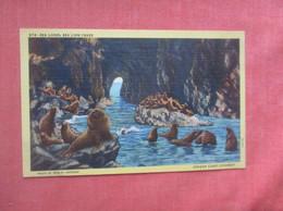 Sea Lions  Sea Lion Caves    Ref  4994 - Sin Clasificación