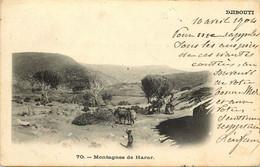 AFRIQUE  DJIBOUTI  Montagne Du Harar - Gibuti
