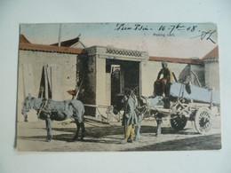 CPA / Carte Postale Ancienne / CHINE / Beijing - PEKIN  - Peking Cart - Charette Chinoise - China