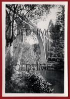 PORTUGAL - SEVER DO VOUGA - PONTE DO POÇO DE S. TIAGO - PONTE SOBRE O VOUGA - 1948 REAL PHOTO - Lugares