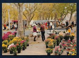 St-Tropez (Var) - Folklore à St-Tropez - Le Marché Forain - Saint-Tropez