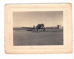 PHOTO  AVION NORTH AMERICAN T-6 TEXAN - Aviación