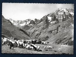 Le Col Du Lautaret (H.-A.) - Pic Des Agneaux (3663 M.) Et Pic De Neige Cordier - Ohne Zuordnung