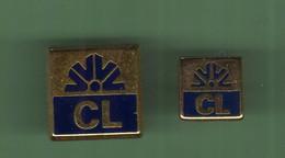 CREDIT LYONNAIS *** LOGO *** Lot De 2 Pin's Differents *** 5001 - Banche