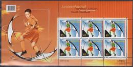 SCHWEIZ  1959, Kleinbogen, Postfrisch **, Fußball EM Schweiz Österreich, 2006 - Blocchi & Foglietti