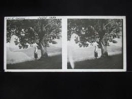 VUE STEREOSCOPIQUE SUR VERRE (M2105) FRANCE ANNECY Années 50 (3 Vues) LAC D'ANNECY - Stereoscopio