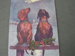 Dackel , Künstler Karte , Not Perfect  Kl. Riß1907 - Hunde
