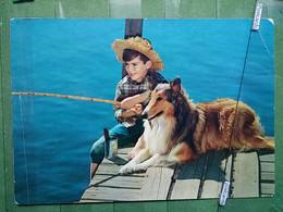 Kov 9-5 - Children, Enfant,   Fisherman, Pêcheur, DOG, CHIEN - Autres