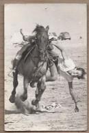CPSM PHOTO ? 13 - LES SAINTES-MARIES DE LA MER - CHEZ KIKI - TB PLAN CASCADE à CHEVAL CAMARGUE 1963 PHOTO CHABASSUD - Saintes Maries De La Mer