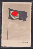 S48 /   Drittes Reich / RAD Fahne - War 1939-45
