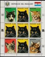 PARAGUAY - Feuillet N°2286 E ** (1987) Chats - Paraguay