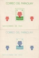 PARAGUAY - 2 BLOCS N°10/11 ** (1961) Année Mondiale Du Réfugié - Paraguay