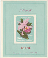 PARAGUAY - BLOC N°27 ** (1963) Orchidées - Paraguay