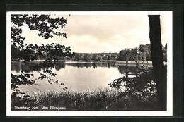 AK Sternberg, Partie Am Ufer Des Eilangsee - Zonder Classificatie