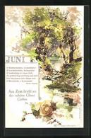 Künstler-AK Theodor Guggenberger: Bach Im Wald Im Juni - Guggenberger, T.