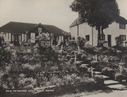 The Galleon Tea House Exceat Bridge Seaford Sussex Real Photo Postcard - Non Classificati
