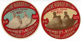 Lot De 2 ét. Diff. Camembert LES NEGRILLONS Fabriqué En Lorraine 40% - Kaas
