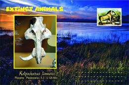 Vignettes De Fantaisie, Extinct Animals : Suidae, Kolpochoerus Limnete - Fantasie Vignetten