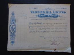 MEXIQUE - TAMPICO OIL MIMITED - TITRE DE 30 ACTIONS DE 5 SHILLINGS - LONDRES 1911 - Unclassified