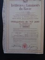 FRANCE - 76 - LE HAVRE - TITRE NON EMIS - TREFILERIES & LAMINOIRS DU HAVRE - OBLIGATION DE 200 NF - Unclassified