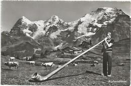 CPSM Suisse Cor Des Alpes Alphornblaser - Otros