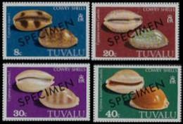CV:€30.00 TUVALU 1980 Cowry Coneshells SPECIMEN:4 - Tuvalu