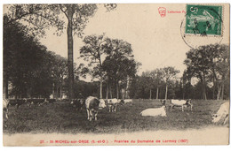 CPA 91 - SAINT MICHEL Sur ORGE (Essonne) - 27. Prairies Du Domaine De Lormoy (1907) - Saint Michel Sur Orge