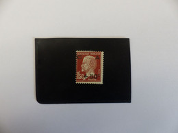 N°  255  NEUF *  COTE  65 € - Unused Stamps