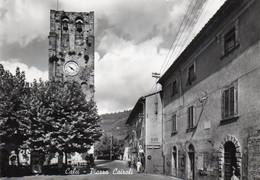 1V6 Sv   Italie Calci Piazza Cairoli Bar Cinzano - Altre Città