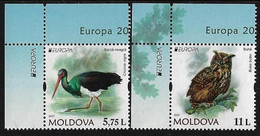 "MOLDAVIA /MOLDOVA /MOLDAWIEN  -EUROPA 2021 -ENDANGERED NATIONAL WILDLIFE""- SERIE De 2 V. - CH-EUR-IZQ - 2020"