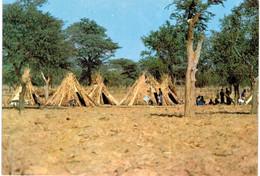 Afrique - Pel Village Peul - Other