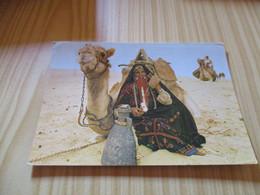 Afrique Du Nord - Femme Bédouine Et Son Chameau. - Autres