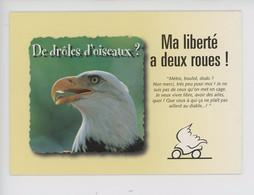 (oiseau Aigle) Ma Liberté A Deux Roues... De Drôles D'oiseaux ? Motor Cycle Council  Permis Moto Européen - Advertising