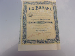 LA BANANE Importation De Fruits & Légumes Exotiques (1911) LA ROCHELLE - Non Classificati