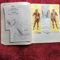 Cahier Ecole Communale De La Loubière Marseille 5é-Cahier D'écolier Sciences Naturelles Texte écriture Au Porte Plume - Book Covers