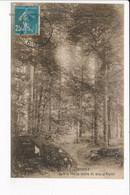 Carte De MONSOLS Le Bois De Sapins Du Mont Saint Rigaud  ( Recto Verso ) - Altri Comuni