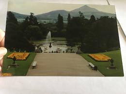 Photo Couleur   1998 Village Irlande Wicklon Le Jardin - Luoghi