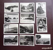 Lot 12 Anciennes Photos Légendées Au Dos : LIBAN Des Années 40 - Luoghi